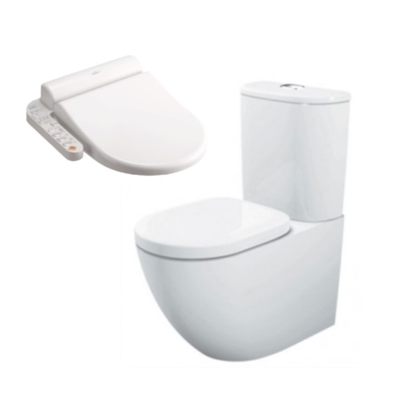 Buying A Toto Toilet